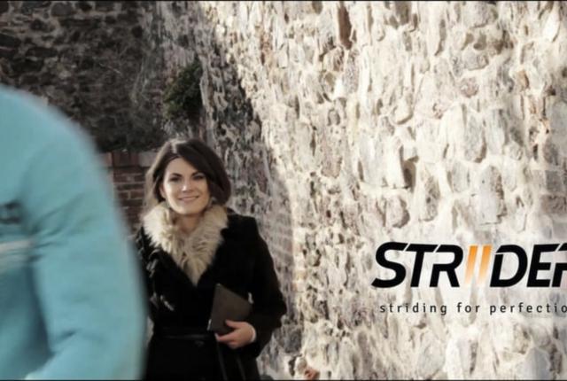 Striider Story